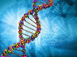 geny a trądzik